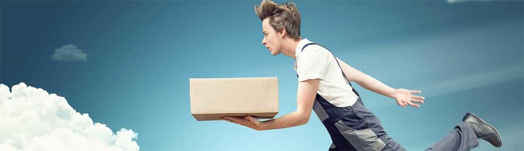 Consegniamo molto velocemente con il servizio postale CH